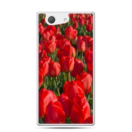 Xperia Z4 compact etui czerwone tulipany