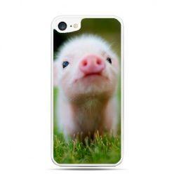 Etui na telefon iPhone 7 - świnka