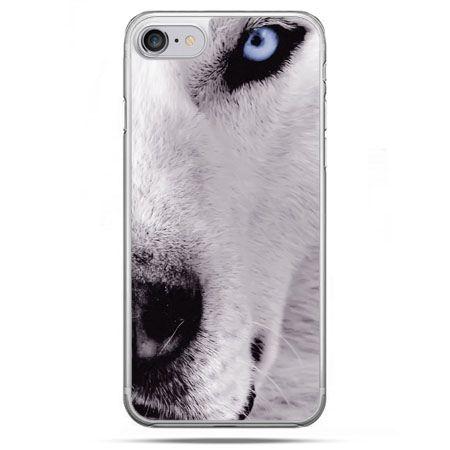 Etui na telefon iPhone 8 - wilk