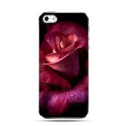 Etui kwiat dzikiej róży