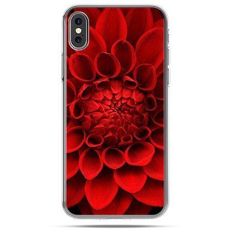 Etui na telefon iPhone XS - czerwona dalia kwiat